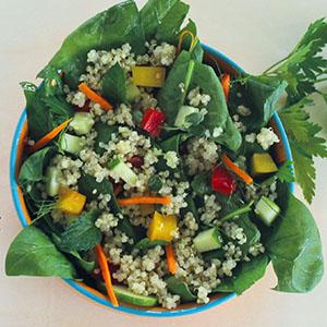 spinat- quinoa salat